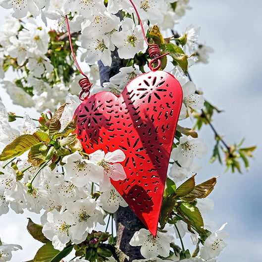 heart 1349974_1920